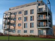 2 bed Flat in Morris Walk, Dartford...