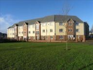 2 bed new Apartment to rent in Purcell Road...