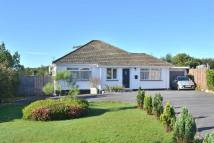 Detached Bungalow for sale in Penwartha, Coverack...