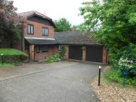Detached Bungalow for sale in Outwell Road, Emneth...