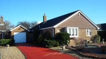 Detached Bungalow in Monkshood Close...