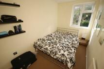Tannington Terrace House Share
