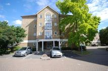 Filton Court Flat to rent