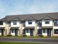 Terraced home in Plot 284 WesterCraigs...