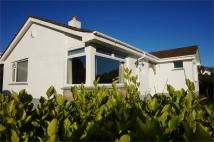 Detached Bungalow for sale in Allen Vale, Liskeard...