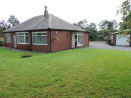 Detached Bungalow in Cinder Hill Lane...