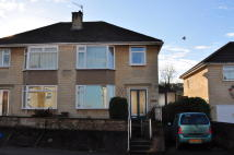 semi detached house to rent in Lymore Avenue, Southdown...