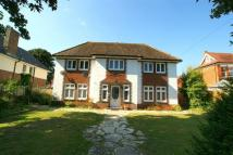 4 bed Detached home to rent in PERCY ROAD, BOSCOMBE SPA.