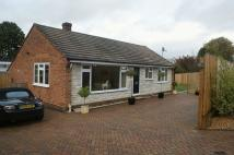 Detached Bungalow for sale in Bercote Close, Littleton...