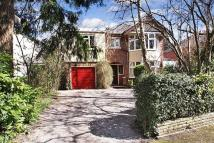 Detached house for sale in Lake Road, Eastleigh