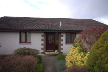 3 bed Detached Bungalow to rent in Inshes View, Westhill...