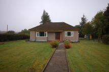 Detached Bungalow in Cantraywood, Croy...
