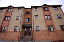 Alltan Court Flat to rent