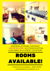 Flat to rent in Woodville Road, Cardiff...