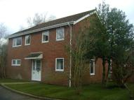 Detached property in Long Down, Petersfield...
