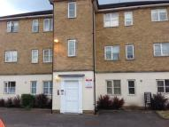 Causton Square Ground Flat to rent