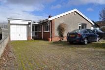 Detached Bungalow for sale in Conway Close...