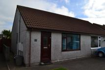 Semi-Detached Bungalow for sale in Liskeard, Cornwall