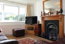 3 bed Semi-Detached Bungalow for sale in Bilsborough Hey...