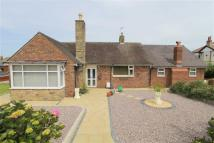 Guildford Avenue Detached Bungalow for sale