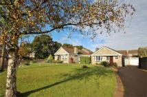 2 bed Detached Bungalow in Lynton Close, Portishead...