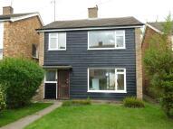 3 bed Detached home to rent in Dane Close, Kedington...