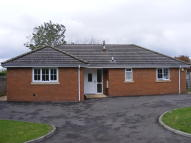 3 bedroom Detached Bungalow to rent in Milbourne, Malmesbury...