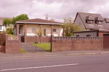 Detached Bungalow for sale in St. Winnings Road...