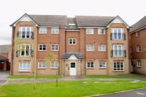 Apartment in Lamberton Drive, Brymbo...