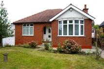 Detached Bungalow for sale in Stryt Isa, Hope, Wrexham