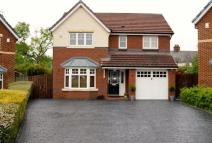 4 bedroom Detached house for sale in Acacia Court, Llay...