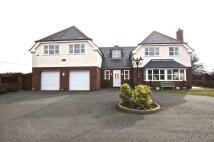 Detached property for sale in Rhyddyn Hill, Caergwrle...