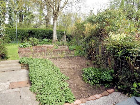 veg-plot.jpg