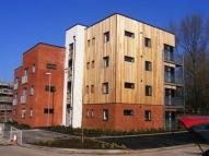 Flat to rent in Tattershall Court...