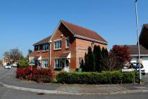 semi detached property for sale in Matthysen Way...