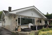4 bed Detached Bungalow in Mornish Road, Poole...