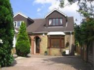 semi detached house to rent in Edwin Road,  Gillingham...