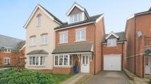 semi detached house in Brackendale Close...