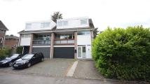 4 bedroom Detached property in Cedar Drive, Sunningdale...