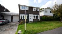 Detached property to rent in Govett Grove, Windlesham...