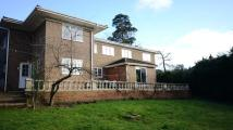 7 bed Detached home in Armitage Court...
