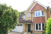 Detached home in Alton, Hampshire