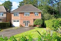 Detached house in Alton, Hampshire