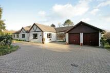 6 bedroom Detached home for sale in Medstead, Alton...