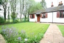 1 bed semi detached property in Holybourne, Alton...