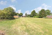 Hattingley Land for sale