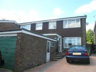 3 bedroom semi detached property to rent in Alton