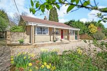 4 bed Detached Bungalow for sale in Medstead, Hampshire