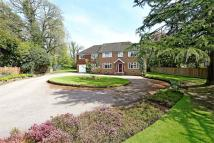 Medstead Detached property for sale