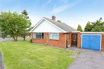 Detached Bungalow for sale in Alresford, Hampshire